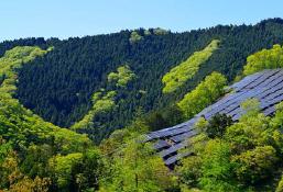 株式会社 再生エネルギー